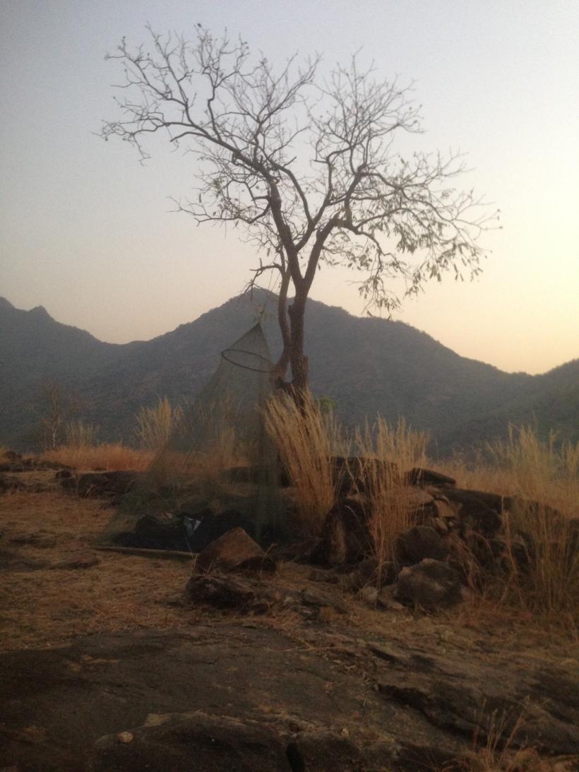africa pics 3-5-16 005